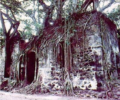 Tours Culturales y Circuitos En El Estado de Veracruz
