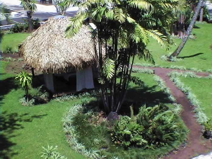 Hospedaje y Alojamiento Hotel En Catemaco, Veracruz Cerca De Nanciyaga